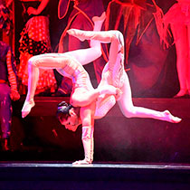 Contortion Duo 107546