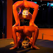 Contortion Duo 109376