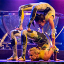 Acrobatic Group 104936