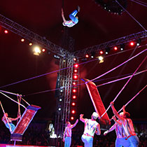 Acrobatic Group 108174