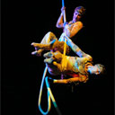 Aerial Rope Duo & Aerial Net Solo Acts