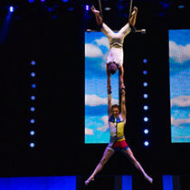 Trapeze Duo Act 9739