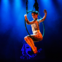 Aerial Act & Pole Dance