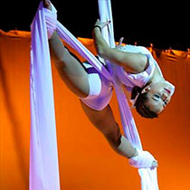 Aerial And Contortion Solo 8558