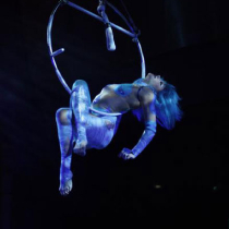 Aerial & Contortion Act 876