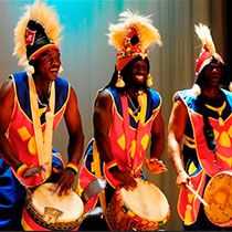 African Band 105154