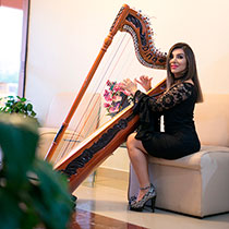 Female Harpist 108633